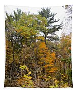 White Pine Hollow State Forest Tapestry