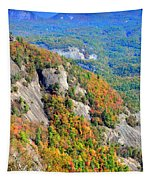 White Side Mountain Fool's Rock In Autumn Vertical Tapestry