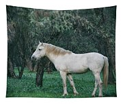White Stallion In The Woods  Tapestry