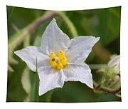 White Star Tapestry