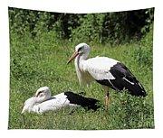 White Storks Tapestry