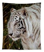 White Tiger Portrait 2 Tapestry