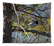 White Wagtail 2 Tapestry