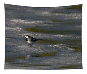 White Wagtail 3 Tapestry