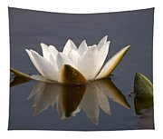 White Waterlily 2 Tapestry