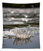White Waterlily 3 Tapestry