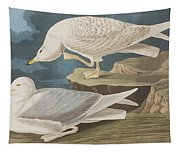 White-winged Silvery Gull Tapestry
