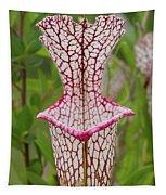 Whitetop Pitcherplant Tapestry