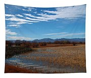 Whitewater Draw Tapestry