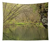 Whitewater River Spring 51 Tapestry