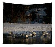 Whooper Swan Nr 13 Tapestry