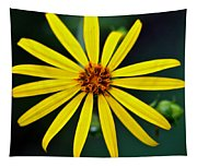 Whorled Rosinweed Tapestry