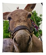 Why The Long Face? Tapestry