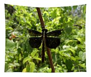 Widow Skimmer Dragonfly Female Tapestry