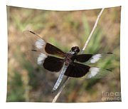 Widow Skimmer Dragonfly Male Tapestry