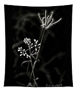 Wild And Beautiful B/w Tapestry
