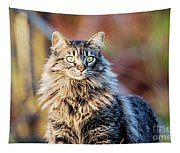 Wild And Beautiful Tapestry