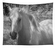 Wild Beauty Bw Tapestry