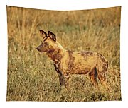 Wild Dog Of Botswana Tapestry