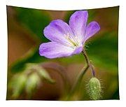 Wild Geranium Tapestry
