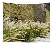 Wild Grass Along An Alley Wall Tapestry