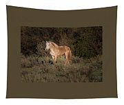 Wild Horse At Sunset Tapestry