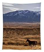 Wild Horse On The Run Tapestry