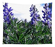 Wild Lupines Tapestry