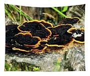Wild Mushrooms Growing On Tree Trunk Tapestry