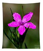 Wild Pink Tapestry