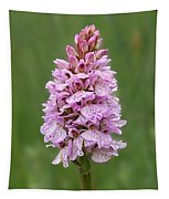 Wild Pink Spotted Orchid Tapestry