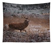 Wild Winter Stag Tapestry