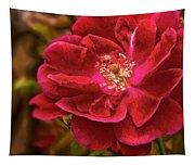 Wild Rose As Oil Tapestry