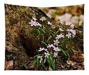 Wild Spring Beauty Tapestry