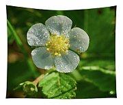 Wild Strawberry Flower Tapestry