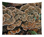 Wild Thing Tapestry