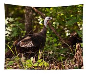 Wild Turkey In Tennessee Tapestry