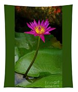Wild Water Lily Tapestry