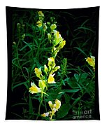 Wild Yellow Flowers On Black Background Tapestry