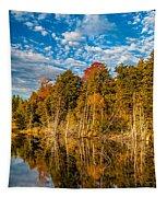 Wilderness Pond  Tapestry