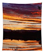 Wildfire Sunset 1v  Tapestry