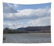 Wildwood Park In Harrisburg, Pa Tapestry