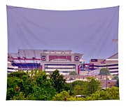 Williams - Bryce Stadium Tapestry