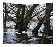 Willow Brook Tapestry