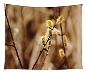 Willow Catkins Tapestry