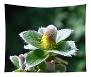 Willow Flower Tapestry