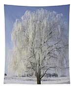 Willow In Ice Tapestry