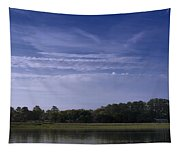 Wilmington River Savannah Morning Tapestry