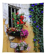 Window Garden In Arles France Tapestry
