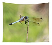 Windswept Dragonfly Tapestry
